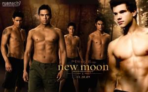 Desktop Wallpaper: The Twilight Saga: N...
