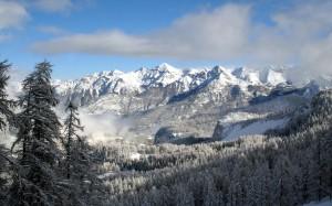 Desktop Wallpaper: Winter Landscape