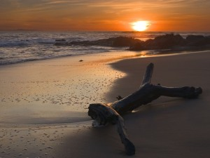 Desktop Wallpaper: Sun Set on the Beach