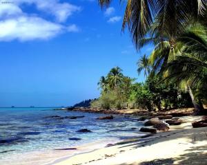 Desktop Wallpaper: Beach in Tropics