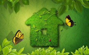 Green House - скачать обои на рабочий стол