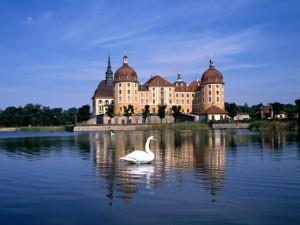 Desktop Wallpaper: Moritzburg Castle