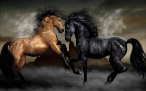 Playing Stunning Horses - скачать обои на рабочий стол