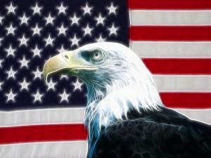 Desktop Wallpaper: Eagle
