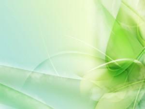 Desktop Wallpaper: Light Green Leaves