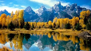 Desktop Wallpaper: Autumn Foliage