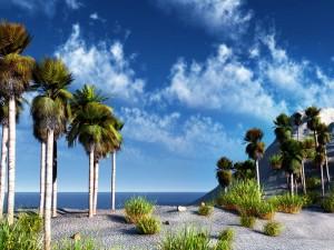 Tropical Landscape - скачать обои на рабочий стол