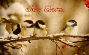 Desktop Wallpaper: Merry Christmas Clip...
