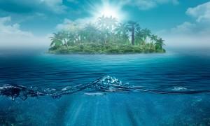 Desktop Wallpaper: Green Palm Tree