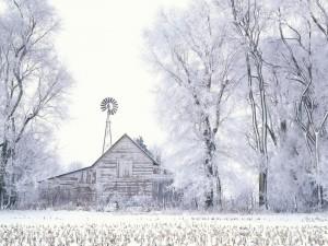 Desktop Wallpaper: Glossy Winter