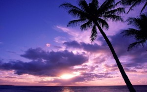 Desktop Wallpaper: Superb Sunset