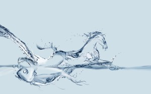 Desktop Wallpaper: Water Horse 3d Illus...