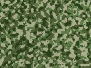 Desktop Wallpaper: Green And Beige Camo...
