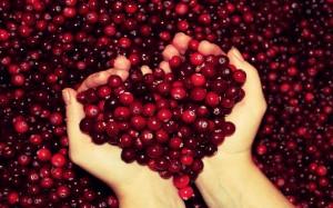 Desktop Wallpaper: Red Cherry