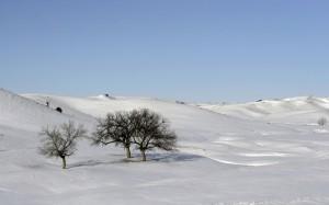 Desktop Wallpaper: Snow Hill