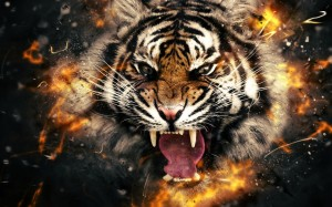 Desktop Wallpaper: Bengal Tiger Poster