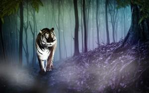 Desktop Wallpaper: Adult Tiger Between ...