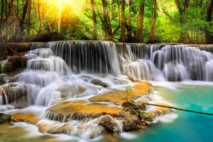 Waterfalls In Forest - скачать обои на рабочий стол