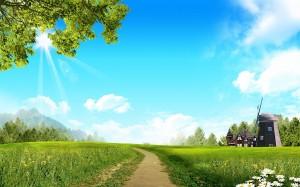 Desktop Wallpaper: Green Grass And Tree...
