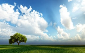 Desktop Wallpaper: Clouds Over Green Le...