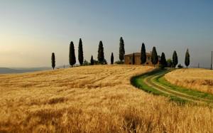 Desktop Wallpaper: Villa With Trees Ona...