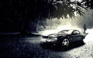 Desktop Wallpaper: Black Viper Mustang ...