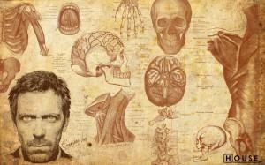 Desktop Wallpaper: Skeleton House Tv Sh...