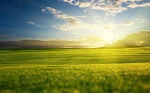 Desktop Wallpaper: Sunlight Coming Thro...
