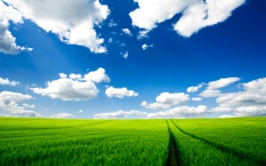 Desktop Wallpaper: Green Fields Under B...