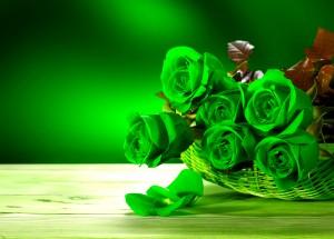 Desktop Wallpaper: Green Rose On Brown ...