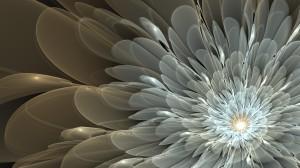 Desktop Wallpaper: White Flower Illustr...