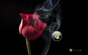Desktop Wallpaper: Red Rose With Smoke