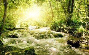 Desktop Wallpaper: River Flowing Throug...