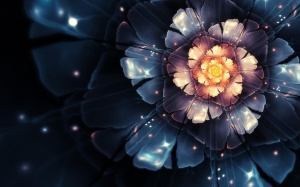 Desktop Wallpaper: Flower Design Graphi...