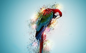 Desktop Wallpaper: Green And Red Parrot