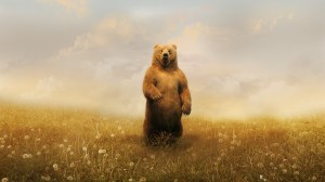 Desktop Wallpaper: Brown Bear Standing ...