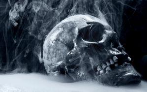 Desktop Wallpaper: Gray skull