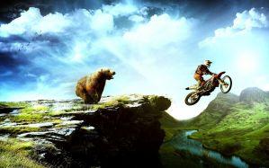 Desktop Wallpaper: Brown bear