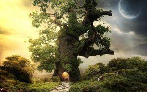 Desktop Wallpaper: Green and brown tree...