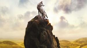 Desktop Wallpaper: Grey wolf on top of ...