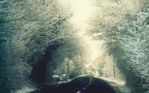 Desktop Wallpaper: Blacktop road surrou...