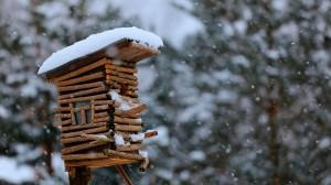 Brown wooden snow covered decor - скачать обои на рабочий стол