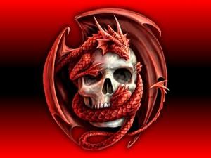 Desktop Wallpaper: Scull with Dragon