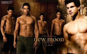 Desktop Wallpaper: The Twilight Saga: N...