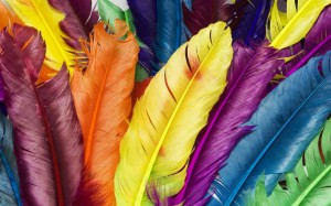 Desktop Wallpaper: Multicolored Feather...