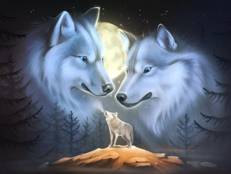 Gray And White Wolf Illustration