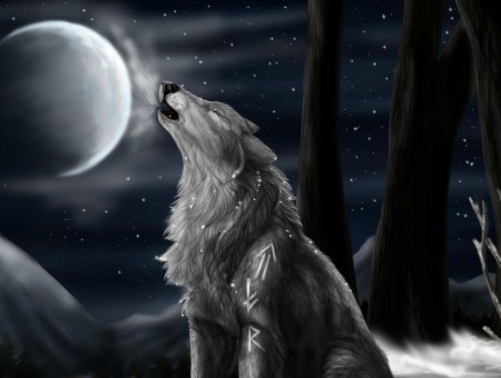 Howling Wolf Illustration