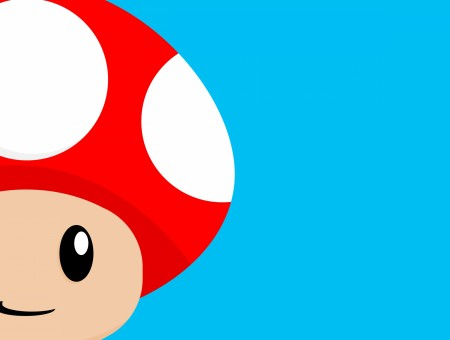Red Mushroom From Super Mario Character