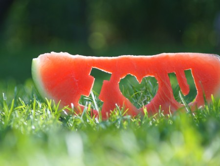 Watermelon With I Love You