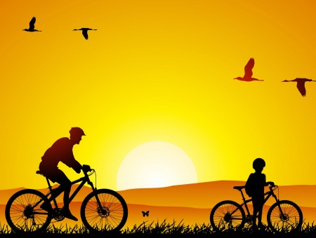 Boy And Man Silhouette On Bicycle